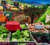 Marché Fermier des Producteurs – Place Carnot